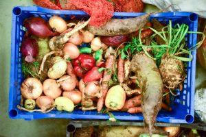 Food Waste Combat – De ce și cum să prevenim risipa alimentară?